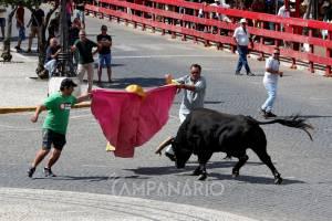 Tradicionais largadas e garraiadas da Festa dos Capuchos mantêm-se com milhares de pessoas a assistir (c/fotos)