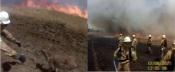 Évora: Equipa de interv. helitransportada de combate a incêndios da GNR salva bezerro das chamas(c/vídeo)