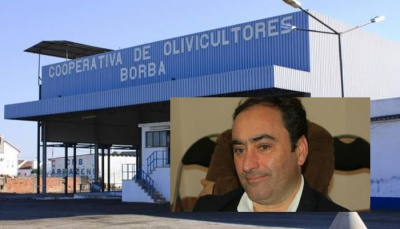 """Cooperativa de Olivicultores de Borba com produção """"acima do esperado, o que demonstra as vantagens do olival tradicional"""", diz Paulo Velhinho (c/som)"""