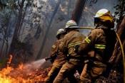 Alentejo com vários concelhos em risco elevado de incêndio