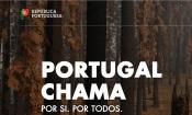 """""""Campanha Portugal Chama"""" apela à sensibilização na prevenção e combate aos incêndios rurais"""