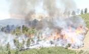 15 entidades do Alentejo, Algarve e Andaluzia reúnem-se para desenvolverem projeto de combate aos incêndios