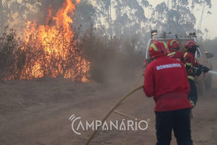Incêndio mobiliza meio aéreo e 4 dezenas de operacionais em Fronteira