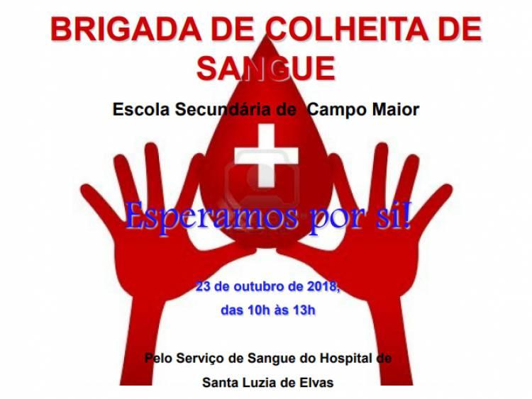 Escola de Campo Maior recebe colheita de sangue a 23 de outubro