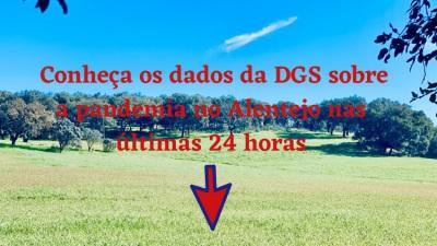 COVID-19/Dados DGS: Alentejo com 41 novos casos e sem óbitos nas últimas 24 horas
