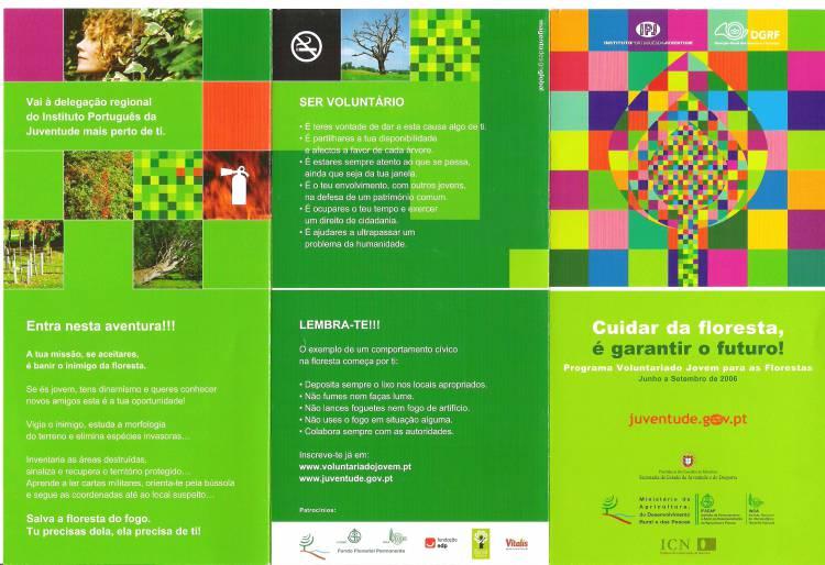 Candidaturas ao Programa Voluntariado Jovem na Floresta terminam dia 16 de junho para entidades