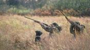 Operação Artémis da GNR regista 87 detidos e 248 contraordenações por caça ilegal entre agosto de 2019 e fevereiro de 2020