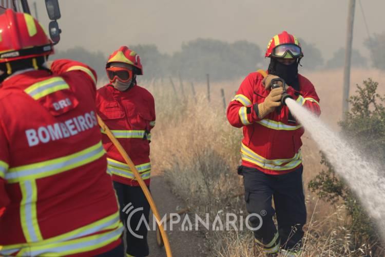 3 dezenas de operacionais combatem chamas no concelho de Beja