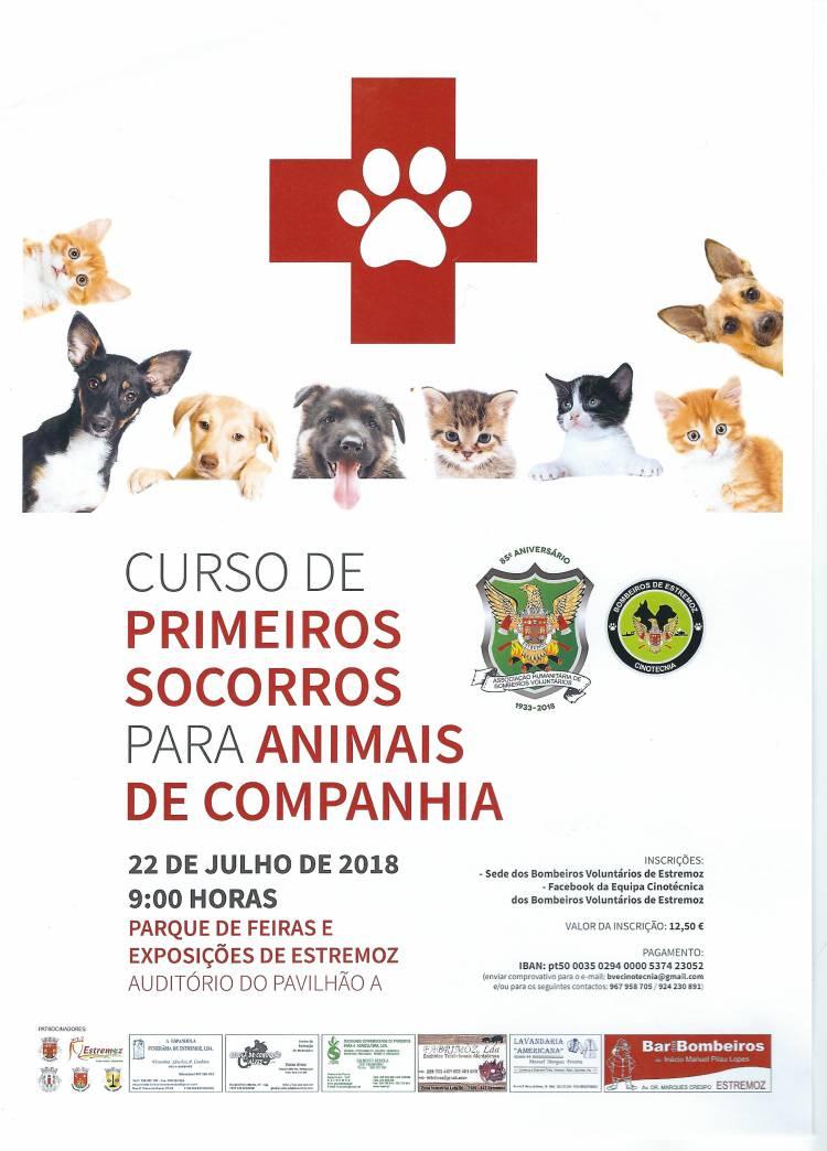 Bombeiros de Estremoz promove workshop de primeiros socorros para animais