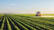 Universidade de Évora lidera projeto europeu para certificar boas práticas agrícolas!