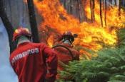 Incêndio de grandes dimensões em Vila Boim mobiliza mais de 100 operacionais e 3 meios aéreos