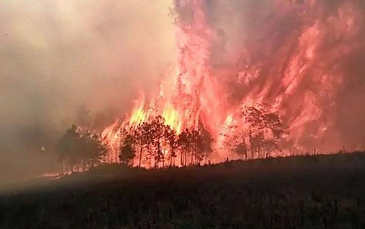 A ANEPC registava às 18h50 um total 37 incêndios que mobilizam 1.225 operacionais, 337 viaturas e 23 meios aéreos.