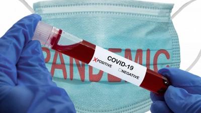 COVID-19: distrito de Beja já conta com 23 casos positivos