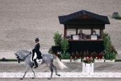 Cavaleiros alentejanos apurados para as finais nos Jogos Olímpicos de Tóquio