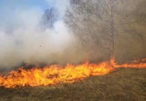 Mais de 1000 m2 ardidos em incêndio agrícola em Montemor-o-Novo, esta segunda-feira (c/som)
