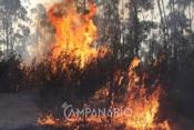 Alentejo: Há seis concelhos em risco muito elevado de incêndio