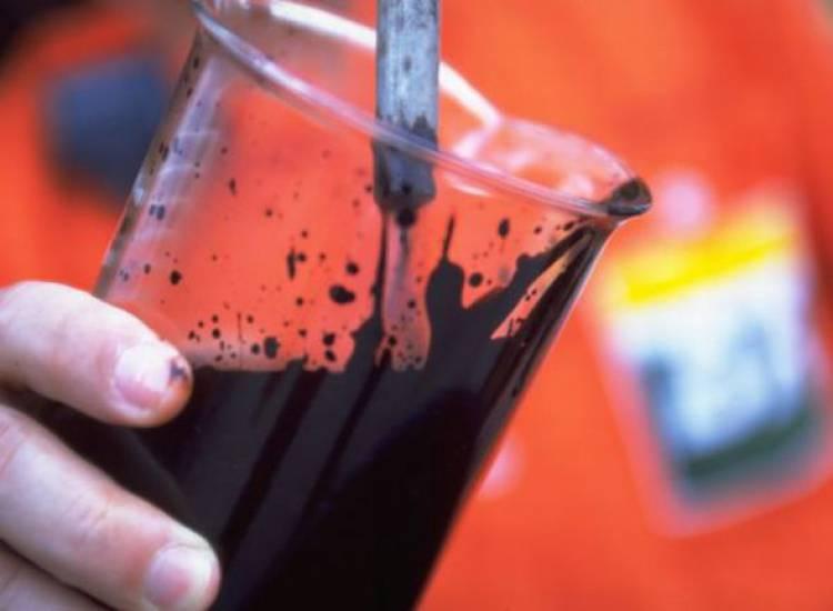 Autarquias vão poder dar a sua opinião ao Governo sobre furo de petróleo na costa alentejana