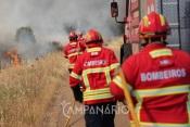 35 operacionais combateram incêndio na Albufeira do Monte Branco em Borba