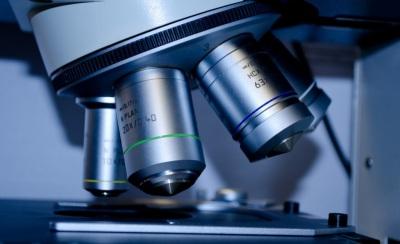 Universidade de Évora reforça posição na investigação com 185 candidaturas submetidas à FCT