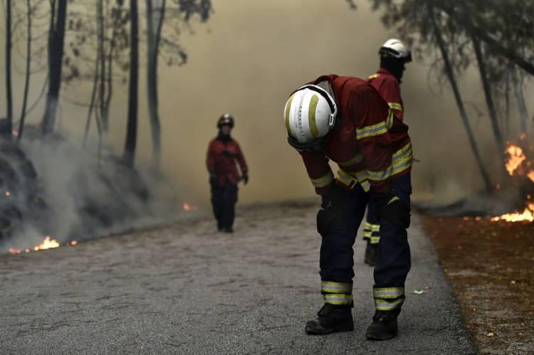 Incêndio em Ponte de Sor faz com que quase todos os operacionais do distrito de Portalegre estejam mobilizados para incêndios