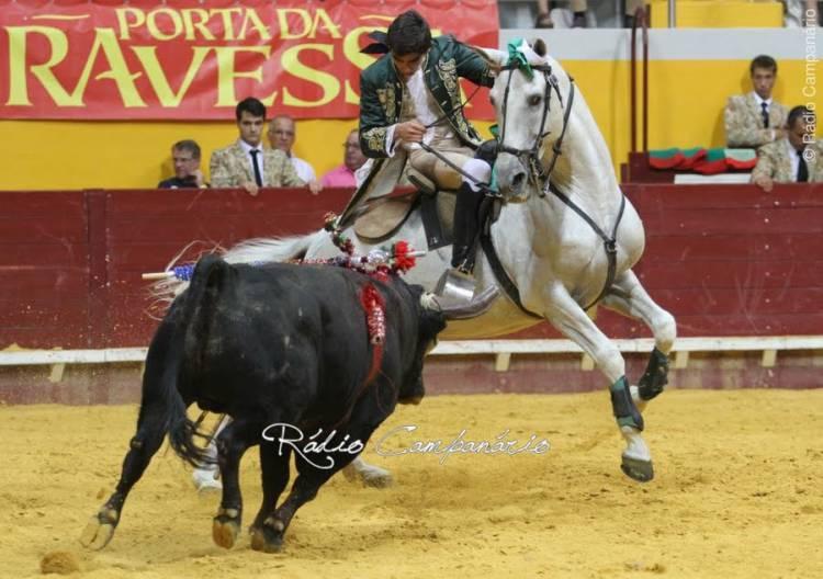 """Acabar com as touradas em Portugal """"é um absurdo"""", diz António Costa da Silva (c/som)"""