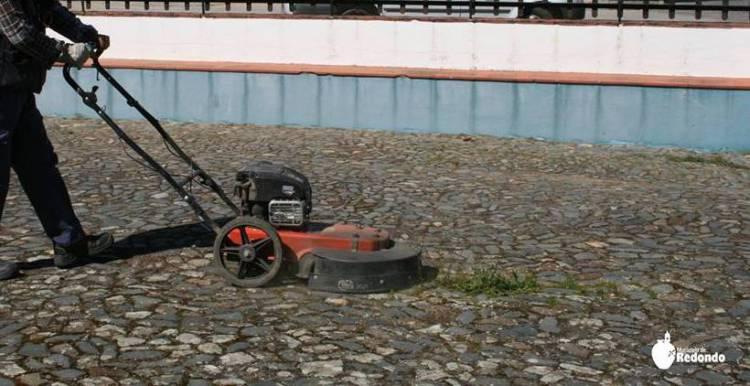 Município de Redondo abandona o uso de herbicidas na via pública