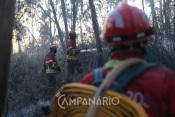Incêndio no concelho do Crato mobilizou dois meios aéreos e cerca de uma centena de operacionais