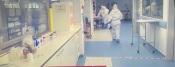Apenas uma cama livre em Cuidados Intensivos e 33 doentes internados com COVID-19 no Hospital de Évora