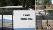 Município de Redondo beneficiou Centro de Recolha Temporário de animais