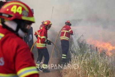 Fogo de grande dimensão obriga ao corte da EN2 na zona de Castro Verde