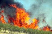 80 operacionais e quatro meios aéreos combatem incêndio em Aljustrel