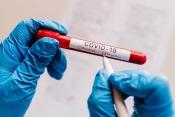 COVID-19: Concelho de Arraiolos regista primeiros casos recuperados