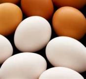 ASAE apreende 50 mil ovos